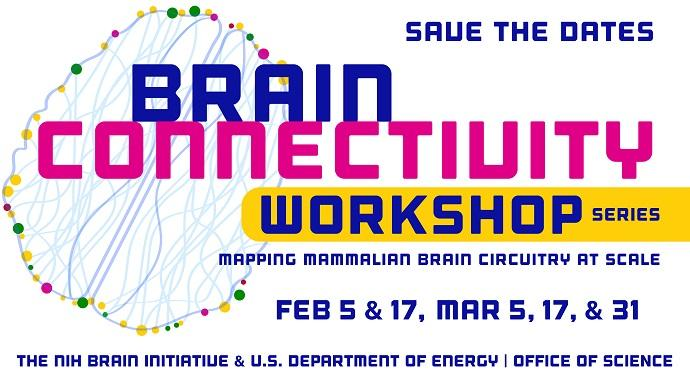 Brain Connectivity Workshop Series