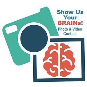 Show Us Your BRAINs! Photo & Video Contest